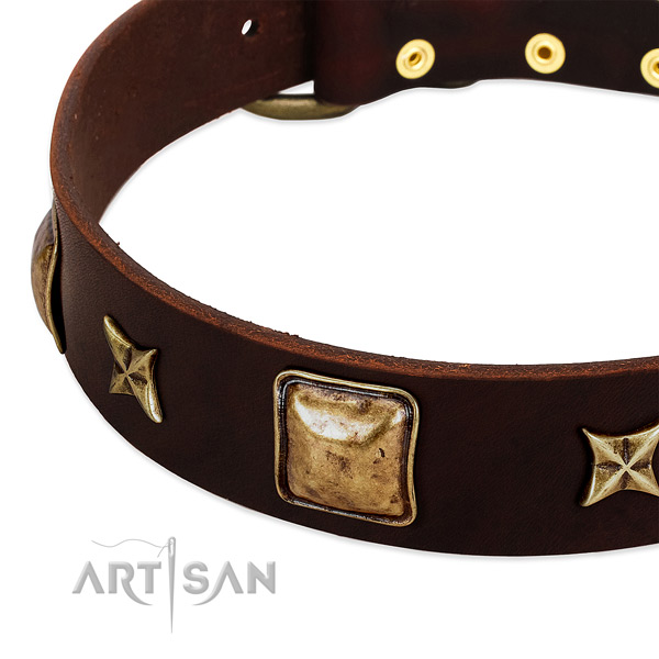 Rust resistant hardware on leather dog collar for your four-legged friend