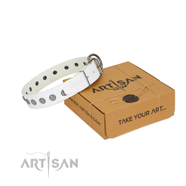 Comfy wearing full grain leather dog collar with stylish design decorations