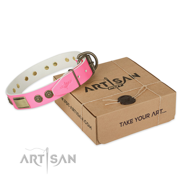 Reliable fittings on dog collar for walking