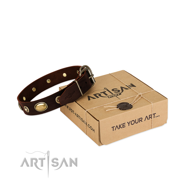 Reliable hardware on natural leather dog collar for your dog