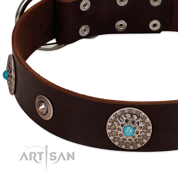 Unusual collar of full grain natural leather for your impressive canine