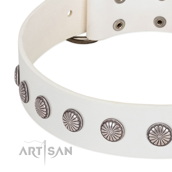 Soft to touch leather dog collar with embellishments for stylish walking