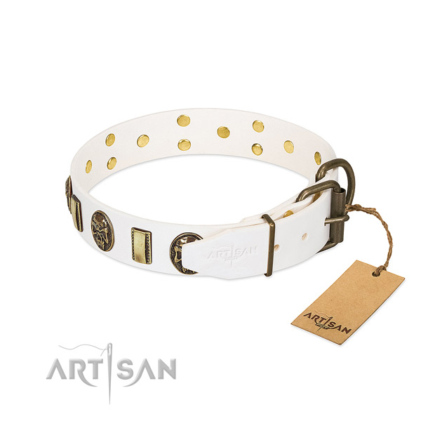 Reliable traditional buckle on genuine leather collar for fancy walking your dog