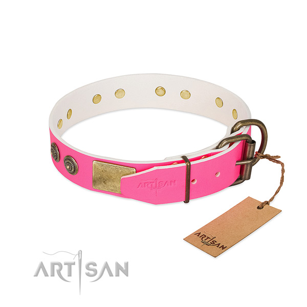 Corrosion proof buckle on full grain genuine leather collar for everyday walking your doggie