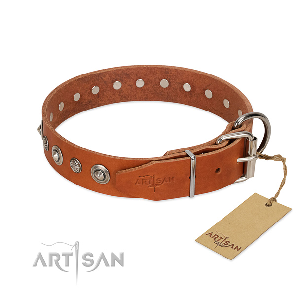 Top notch full grain genuine leather dog collar with fashionable adornments