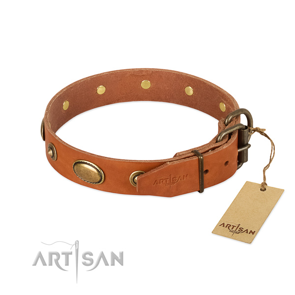 Corrosion resistant buckle on full grain genuine leather dog collar for your doggie