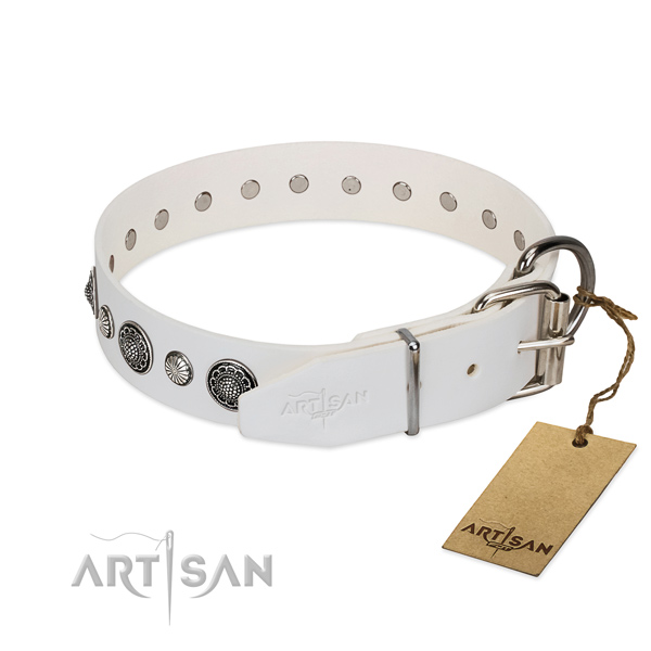 High quality leather dog collar with rust resistant buckle