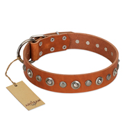 """Gorgeous Roundie"" FDT Artisan Tan Leather German Shepherd Collar with Chrome-plated Circles"