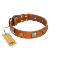 """Celtic Tunes"" FDT Artisan Tan Leather German Shepherd Collar Adorned with Stars and Squares"