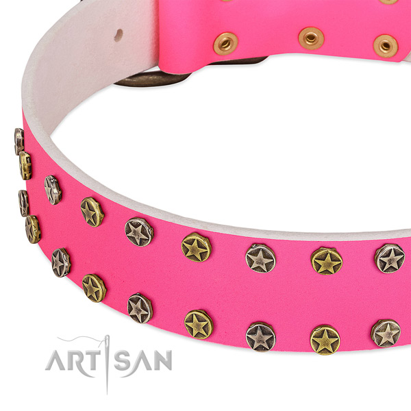 Flexible leather collar with embellishments for your pet