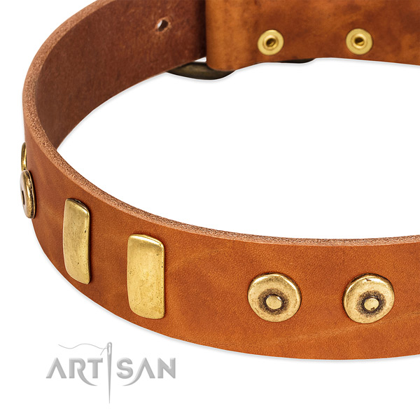 Soft natural leather collar with top notch adornments for your dog