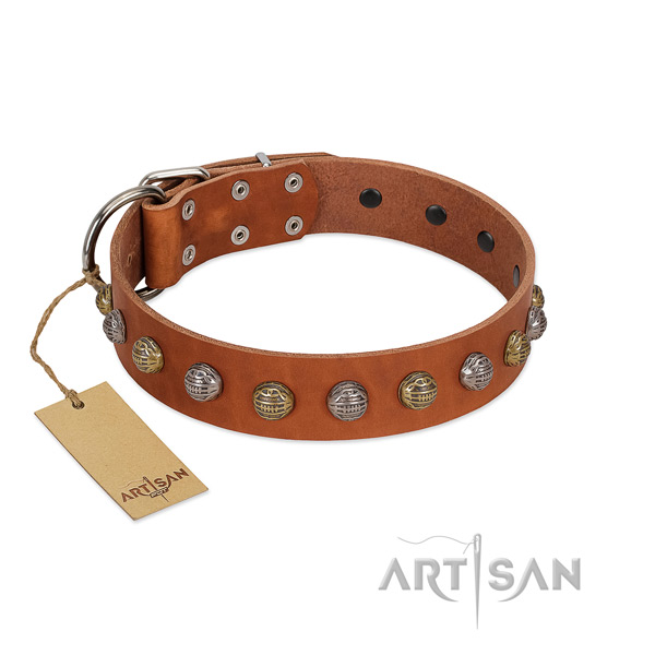 Corrosion proof hardware on full grain genuine leather dog collar for walking your dog