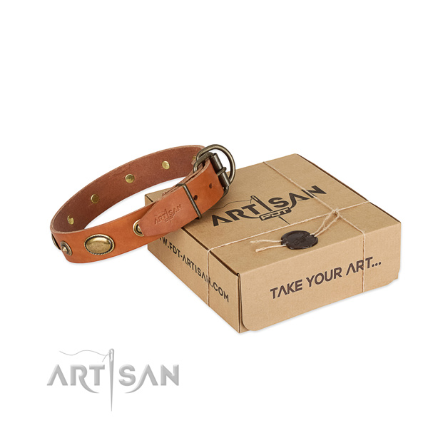 Strong fittings on full grain genuine leather dog collar for your canine