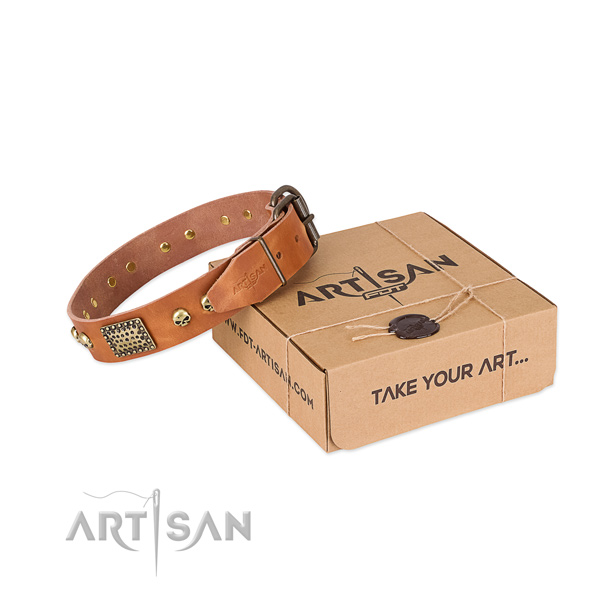 Rust resistant decorations on dog collar for comfortable wearing