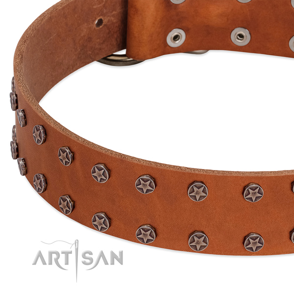 Top rate full grain genuine leather dog collar with adornments for your doggie