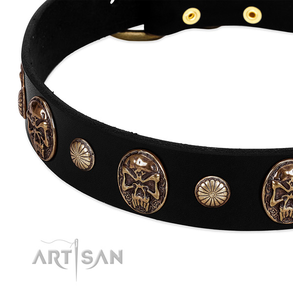 Full grain leather dog collar with impressive studs