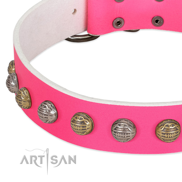 Corrosion proof hardware on full grain leather collar for fancy walking your doggie