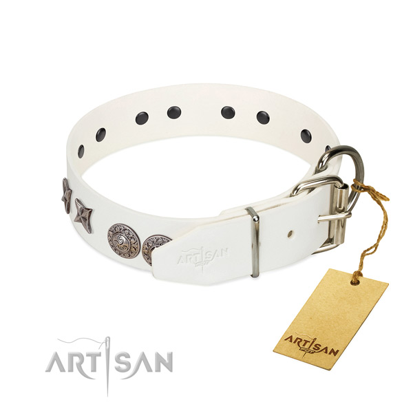 Fancy walking gentle to touch full grain leather dog collar with adornments