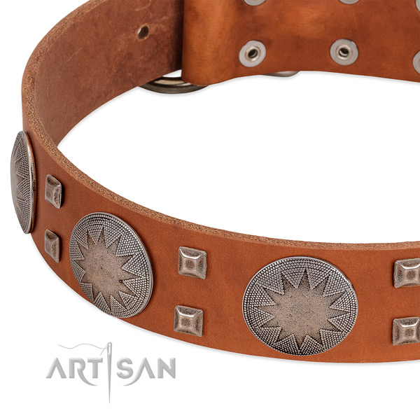 Walking top rate genuine leather dog collar