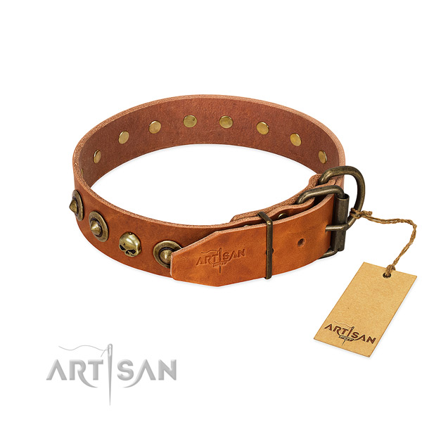 Full grain natural leather collar with designer studs for your canine