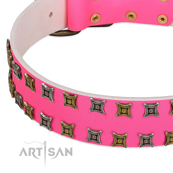 Full grain natural leather dog collar with studs for your lovely dog