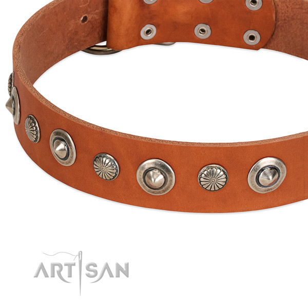 Stylish design adorned dog collar of durable genuine leather
