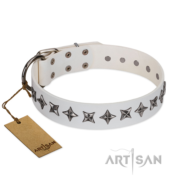 Daily use dog collar of fine quality genuine leather with decorations