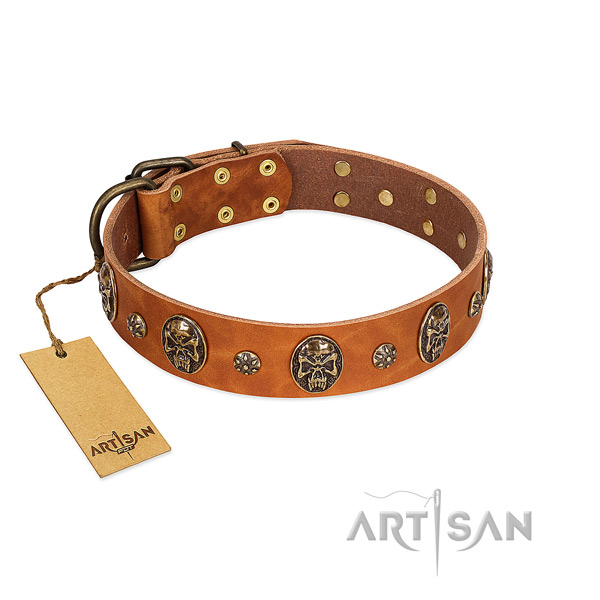 Decorated genuine leather collar for your four-legged friend
