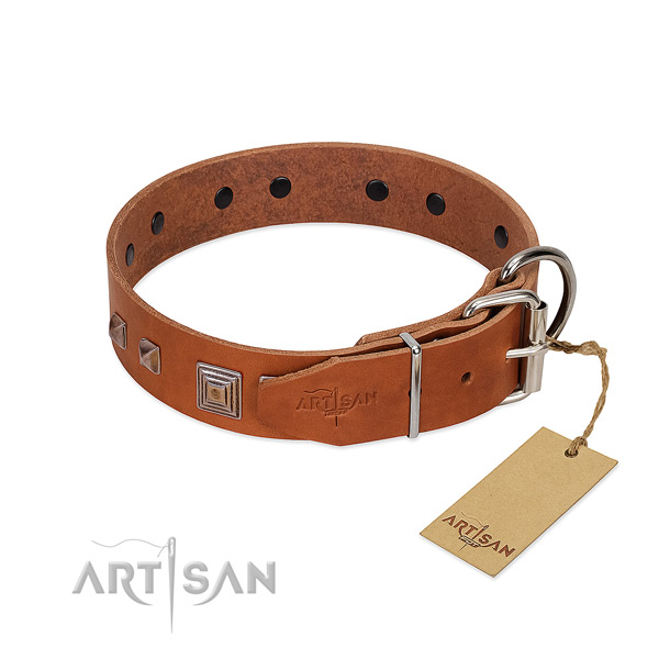 Everyday walking full grain natural leather dog collar with fashionable decorations