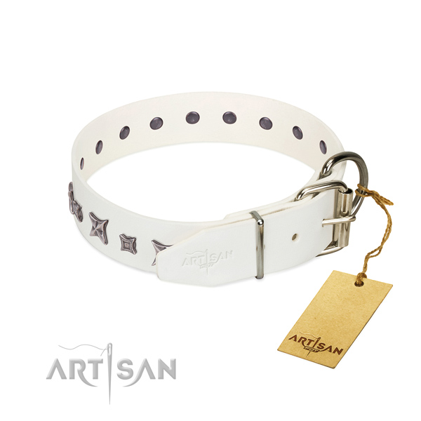 Full grain leather dog collar with exceptional decorations created dog