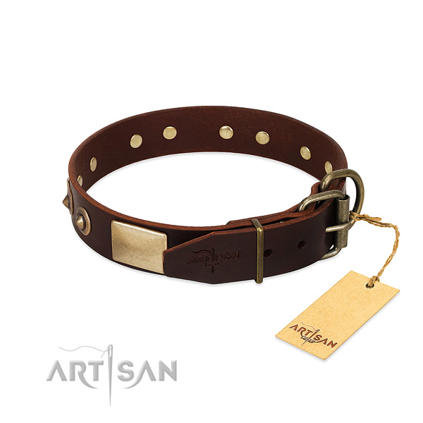 Corrosion proof traditional buckle on handy use dog collar