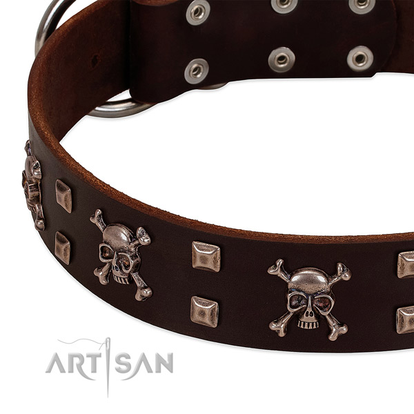 Exceptional collar of full grain leather for your stylish pet