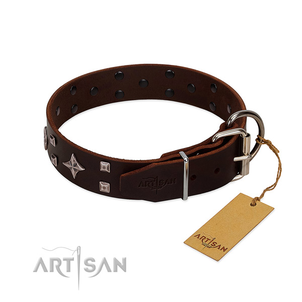 Trendy genuine leather collar for your four-legged friend walking