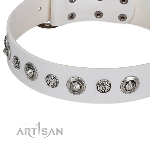 Full grain leather collar with corrosion proof hardware for your attractive doggie