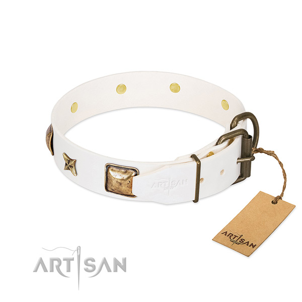 Full grain leather dog collar with strong hardware and studs