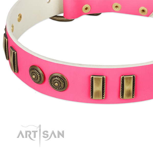 Corrosion proof embellishments on full grain genuine leather dog collar for your four-legged friend