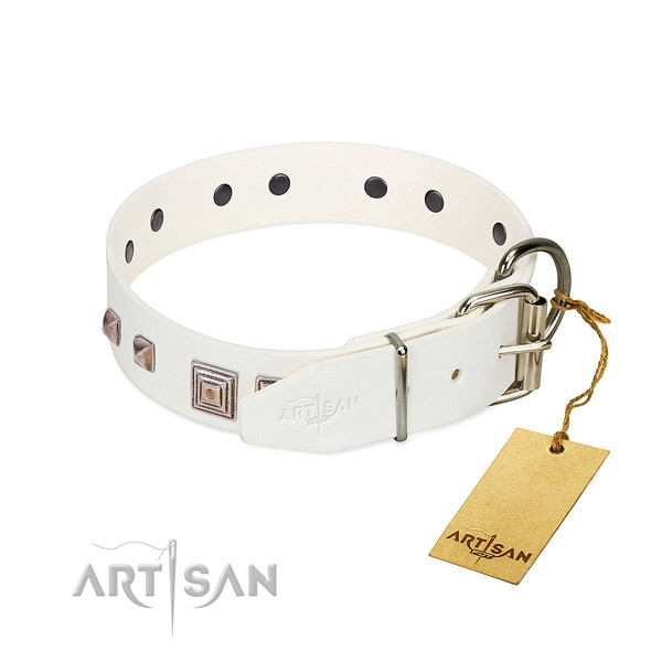 Easy to adjust collar of full grain leather for your beautiful pet