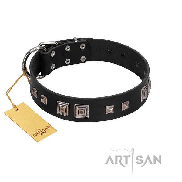 Unusual full grain genuine leather collar for your lovely four-legged friend