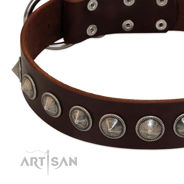 Comfy wearing decorated full grain leather collar for your doggie