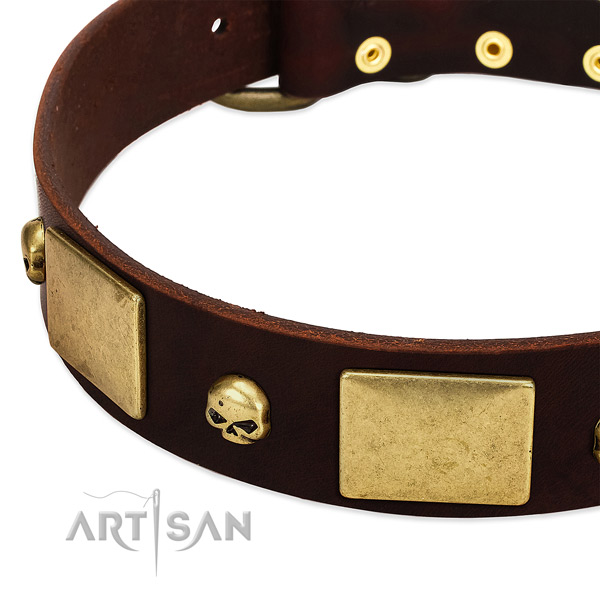 Durable leather collar with corrosion proof embellishments for your dog