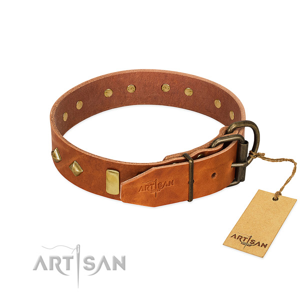 Comfortable wearing full grain leather dog collar with inimitable adornments