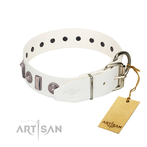 Handy use full grain leather dog collar with impressive adornments