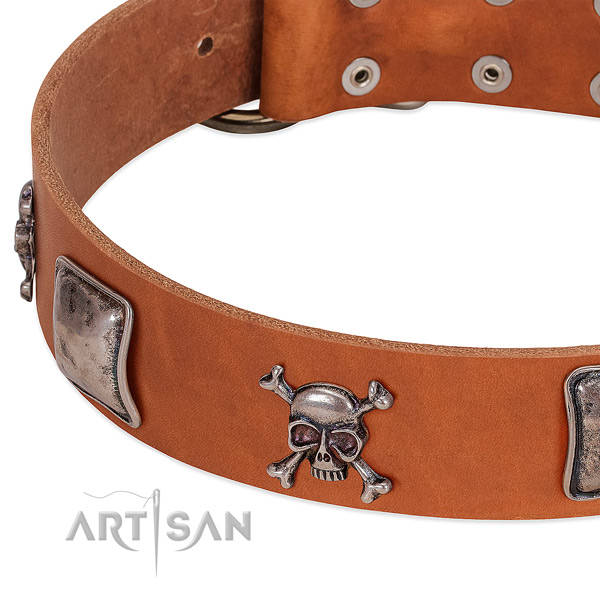 Corrosion proof adornments on leather dog collar