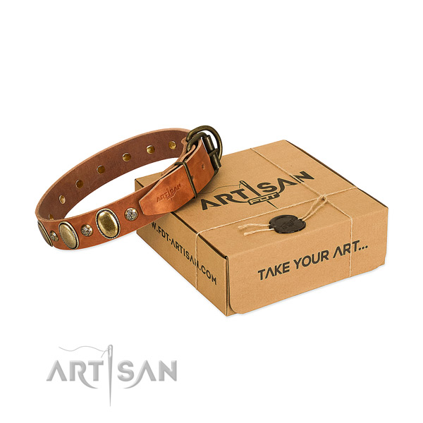 Handmade leather dog collar with durable buckle