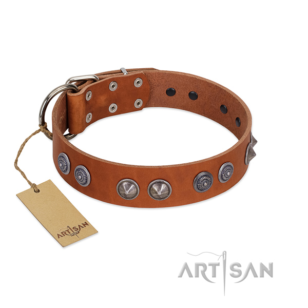Top rate leather collar with studs for your doggie