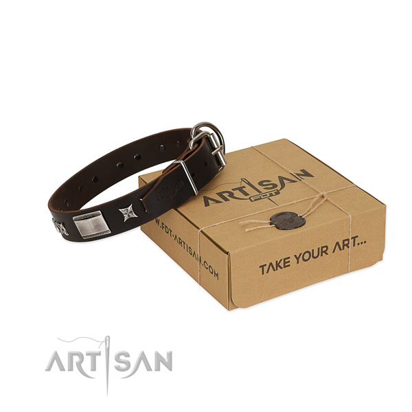 Best quality collar of leather for your handsome pet
