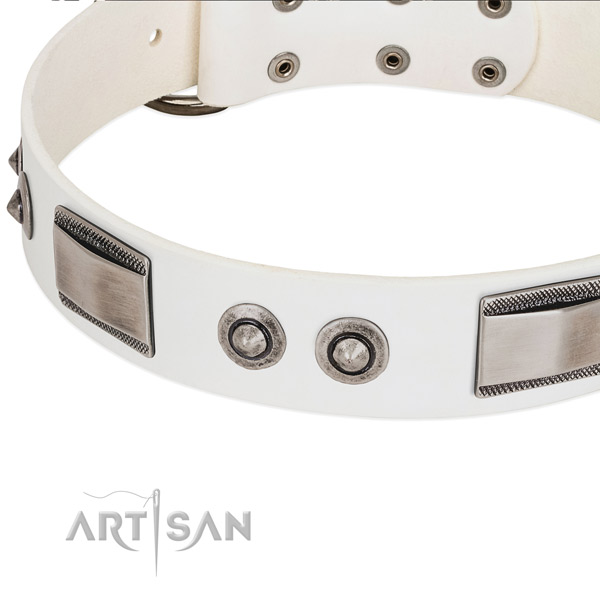 Impressive dog collar of full grain leather with adornments