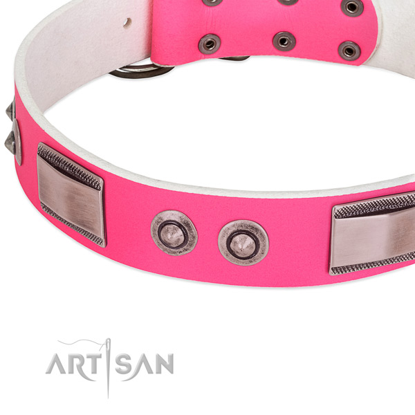 Significant full grain genuine leather collar with embellishments for your dog