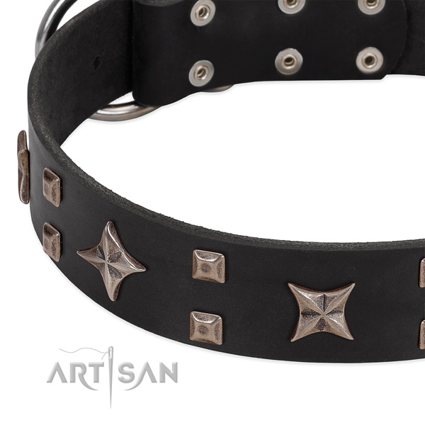Rust-proof traditional buckle on full grain genuine leather collar for daily walking your pet