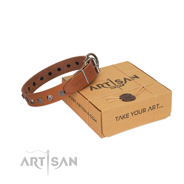 Best quality full grain leather collar with adornments for your four-legged friend